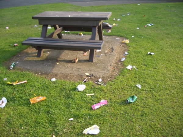 Litter in Sandall Park