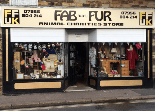 Chesterfield-charity-shops-fab-(not)-fur