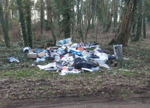Lincoln-fly-tipping-woods